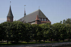 Kathedraal in Kaliningrad Stock Fotografie