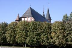 Kathedraal in Kaliningrad Stock Foto