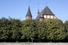 Kathedraal in Kaliningrad Stock Afbeelding