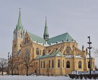 Kathedraal, Lodz, Polen Stock Fotografie