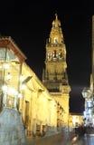 Kathedraal-moskee in Cordoba, Spanje Stock Afbeeldingen