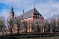 Kathedraal op Kant-eiland in Kaliningrad Stock Foto