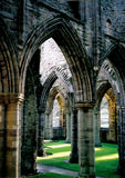 Kathedraal in Tintern Royalty-vrije Stock Foto