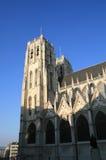 Kathedraal van Brussel Stock Afbeeldingen