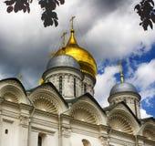 Kathedraal van de Aartsengel Moskou het Kremlin stock fotografie