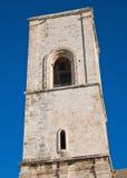 Kathedraal van de Veronderstelling van St. Mary. Polignano stock afbeeldingen