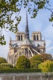 Kathedraal van Notre Dame de Paris Stock Afbeelding