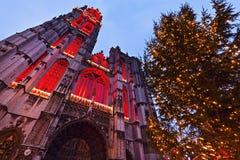 Kathedraal van Onze Dame in Antwerpen Stock Foto