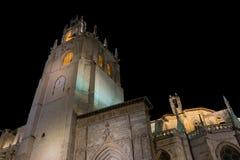 Kathedraal van Palencia Royalty-vrije Stock Fotografie