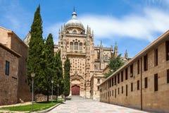 Kathedraal van Salamanca Stock Foto's