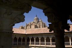 Kathedraal van Salamanca. Salamanca, Spanje Stock Afbeeldingen