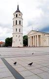 Kathedraal van St Stanislaus in Vilnius Royalty-vrije Stock Foto