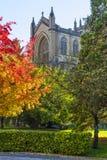 Kathedraal van Vitoria Gasteiz stock afbeeldingen