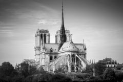 Kathedraal van zonnige de herfstmiddag van Notre Dame de Paris BW foto parijs frankrijk stock foto