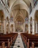 Kathedraalbasiliek van de Onbevlekte Ontvangenis Stock Fotografie