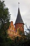 Kathedraalkerk in Kaliningrad die door de bomen wordt gezien Stock Foto
