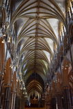 Kathedraalplafond van gewelfde bogen Stock Afbeelding