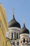 Kathedrale Alexanders Nevsky Stockbilder