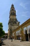 Kathedrale in Cordoba, Lizenzfreie Stockfotos