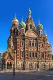 Kathedrale des Retters auf Sonne Spilled Bluts morgens, St Petersburg lizenzfreie stockfotos