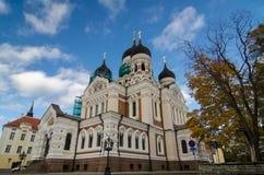 Kathedrale im Tallinn Lizenzfreies Stockfoto