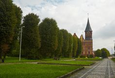 Kathedrale in Kaliningrad stockbild