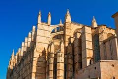 Kathedrale La Seu Stockbilder