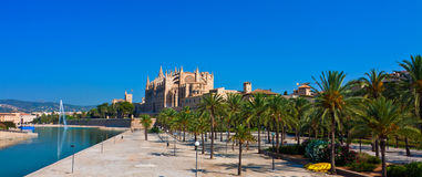 Kathedrale La Seu Panorama Royalty Free Stock Photo