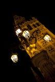 Kathedrale nachts Lizenzfreie Stockfotos