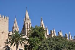 Kathedrale in Palma, Mallorca Stock Foto's