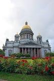 Kathedrale St. Isaacs und das Wachsen einer Rose auf Quadrat St. Isaacs im Sommer Lizenzfreie Stockfotografie