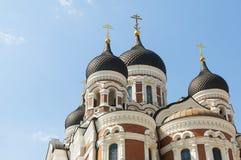 Kathedrale Tallinn Alexanders Nevsky Stockbilder