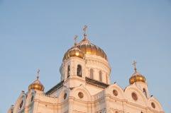 Kathedrale von Christ der Retter Lizenzfreie Stockfotos