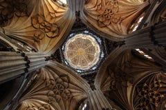Kathedrale von Salamanca Stockfotos