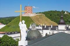 Kathedrale von St. Stanislaus Stockfotografie