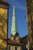 Kathedralen van Riga Royalty-vrije Stock Afbeeldingen