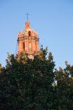 Kathedralenturm mit Baum in San Luis Potosi lizenzfreies stockbild