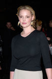 Katherine Heigl Royalty Free Stock Photo