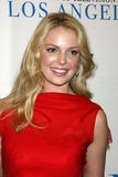 Katherine Heigl Royalty Free Stock Images