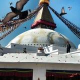 kathmandu стоковые фотографии rf