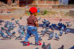KATHMANDU, NEPAL - April 26, 2012: Unidentified little black child walking in the street with a flock of pigeons, at. Durbar square near old hindu temples in royalty free stock photos