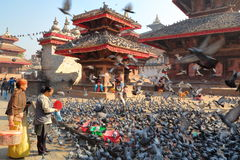 KATHMANDU, NEPAL - JANUARY 14, 2015: Two Nepalese women feeding pigeons at Durbar Square in Kathmandu, Nepal royalty free stock images