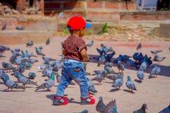 KATHMANDU NEPAL, Kwiecień, - 26, 2012: Niezidentyfikowany mały czarny dziecka odprowadzenie w ulicie z kierdlem gołębie, przy Zdjęcia Royalty Free