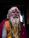 En sadhu under den Shivaratri festivalen i Kathmandu, Nepal Royaltyfria Foton
