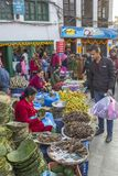 Nepalese women sell fish and fruits in the street market. Asian pedestrian shopping street. Buyer on royalty free stock images