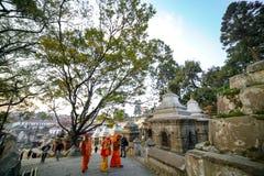 Hindu saints walking around Pashupatinath Temple royalty free stock photography