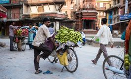 Man sells bananas on a bike on a street market. Kathmandu, Nepal, - October 05, 2017: Man sells bananas on a bike on a street market Stock Images