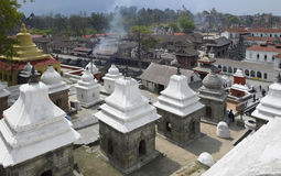 kathmandu nepal pashupatinath Royaltyfri Foto