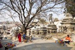 kathmandu nepal pashupatinathtempel Royaltyfri Fotografi