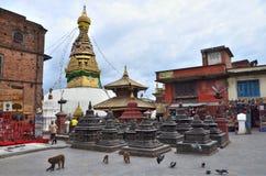 Kathmandu, Nepal, Septenber, 29, 2013, Leute, die in den Tempelkomplex von Swayambhunath (Affe, gehen Hügel) Stockbilder